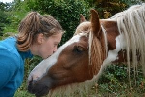 Equine gestalt session participant and her horse work through feelings of loss and deal with grief